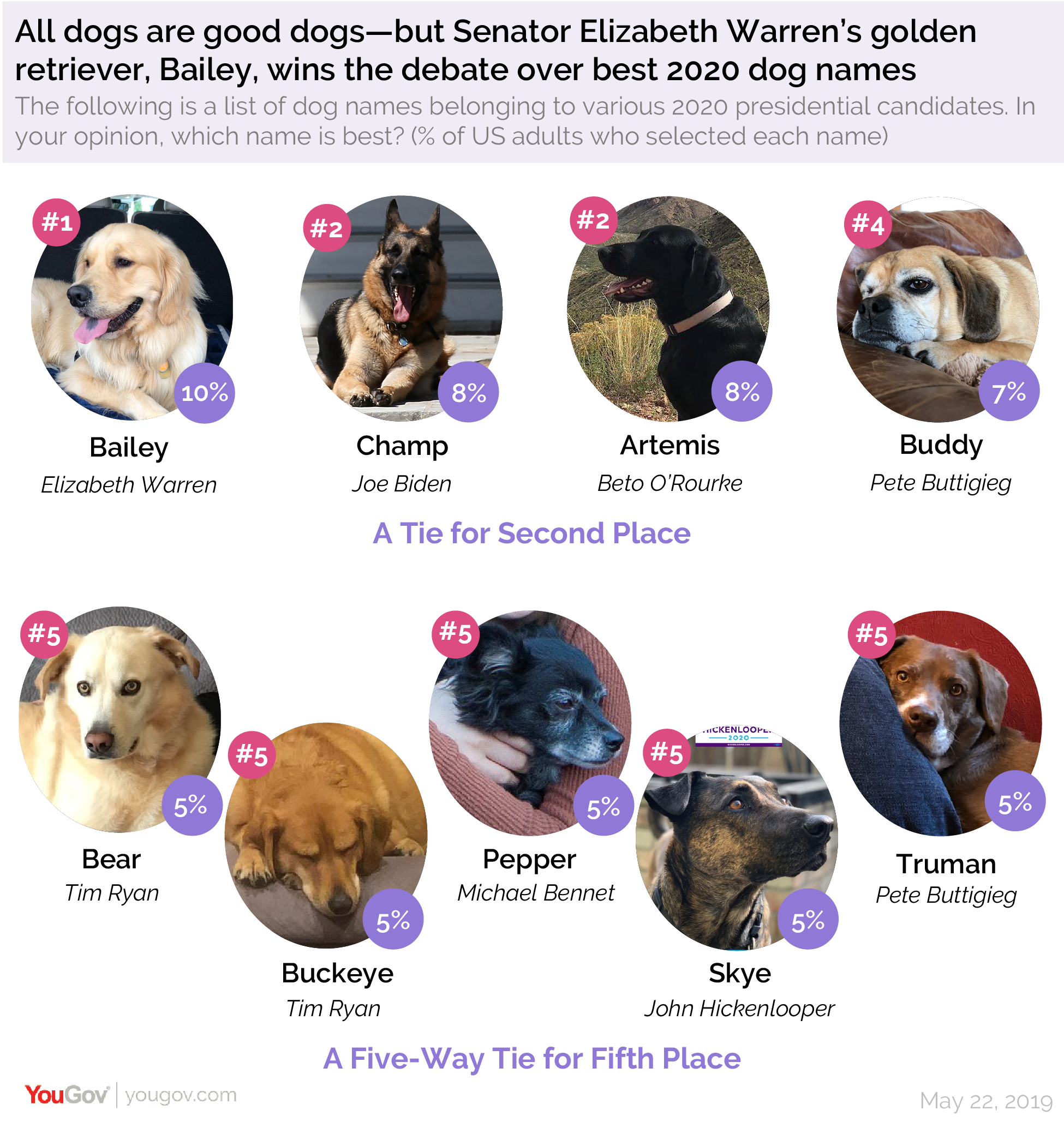 All dogs are good dogs, but Senator Elizabeth Warren's golden retriever, Bailey, wins the debate over best 2020 dog names