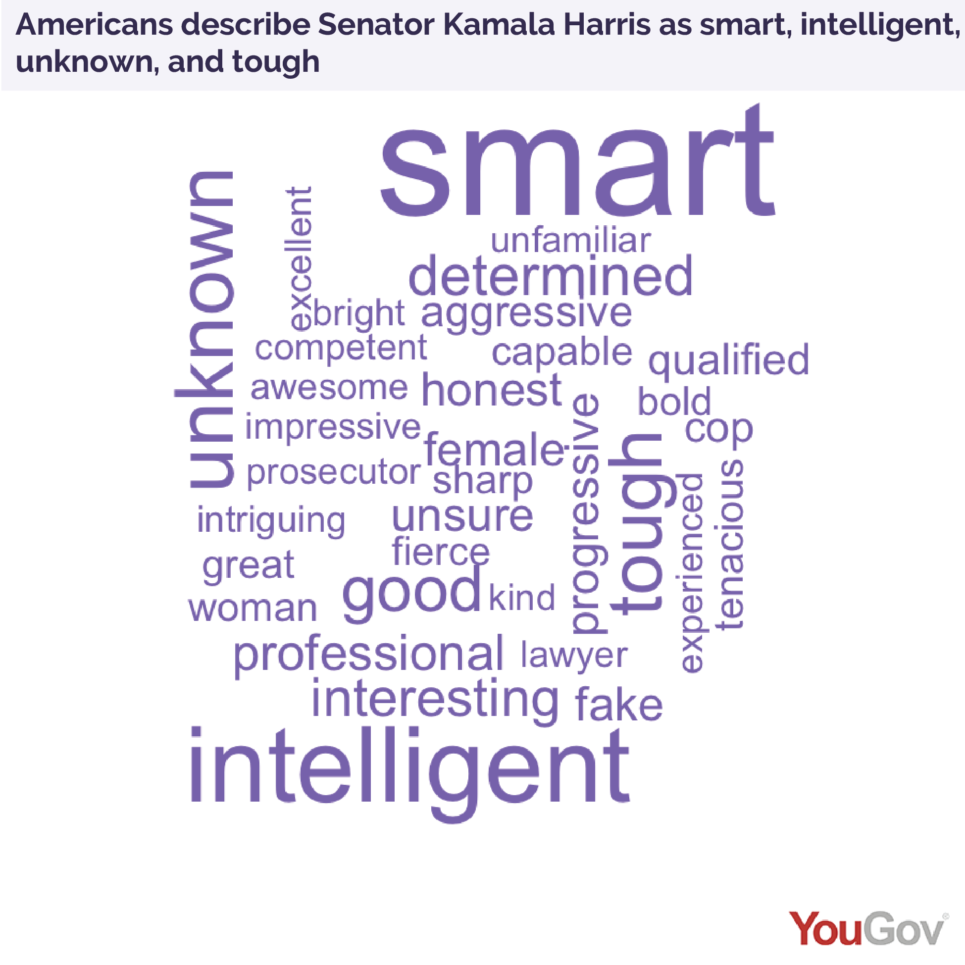 Americans describe Senator Kamala Harris as smart, intelligent, unknown, and tough