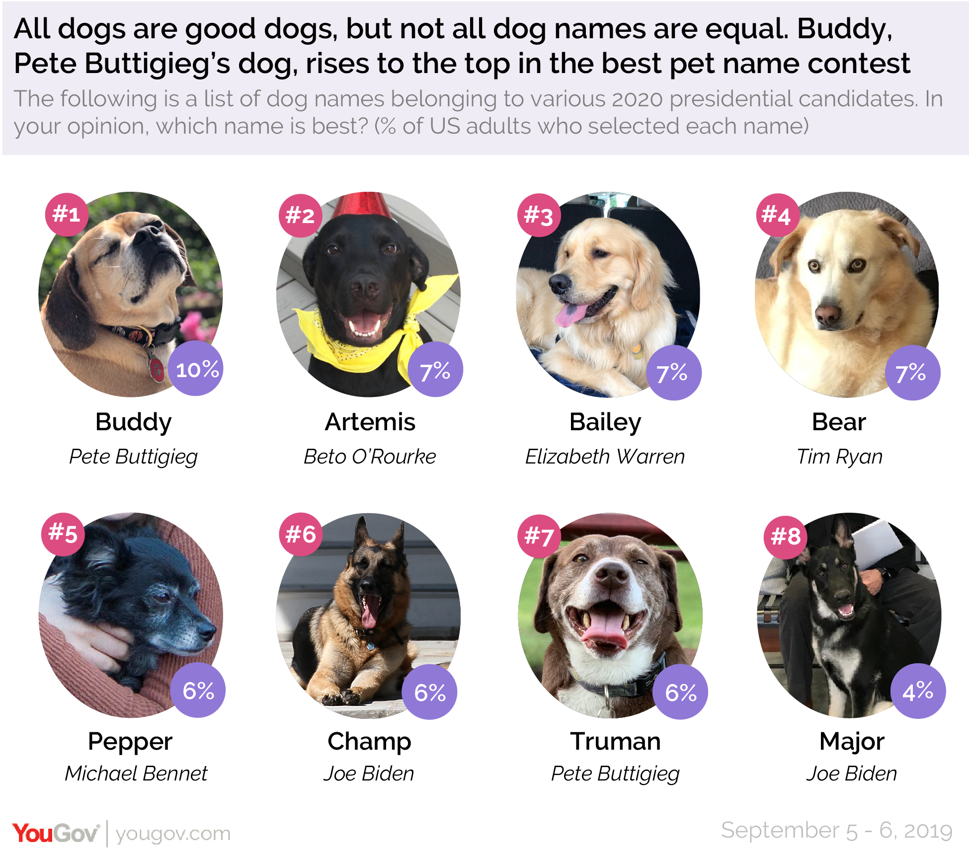 Pete Buttigieg's dog, Buddy, rises to the top of YouGov's best pet name contest