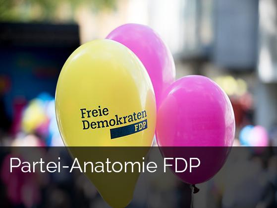 Zur Studie: Partei-Anatomie FDP