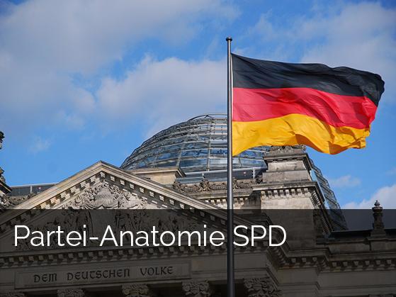 Zur Studie: Partei-Anatomie SPD