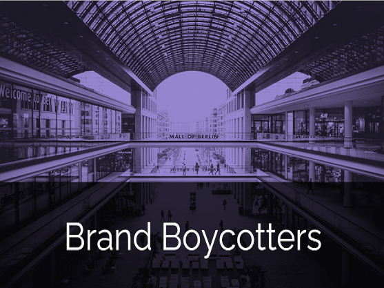 Zum Download: Whitepaper Brand Boycotters